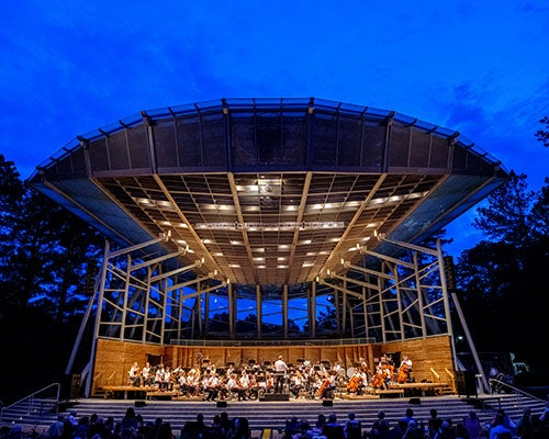 More Info for NC Symphony Presents: Classics Under the Stars