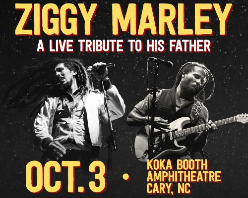 More Info for  Ziggy Marley - A Live Tribute to His Father